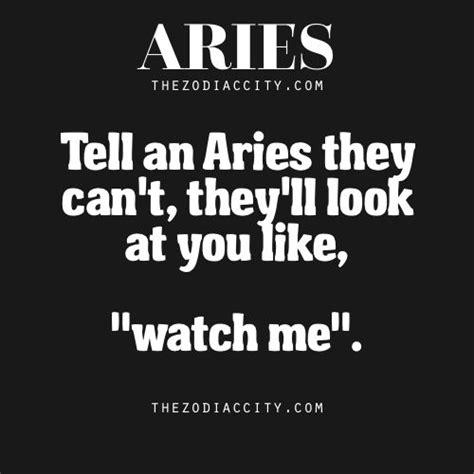 best horoscope best 25 zodiac signs aries ideas on aries