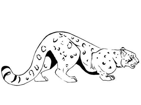 snow leopard tattoo designs snow leopard on jaguar snow