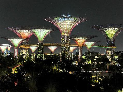 Patio Lights Singapore Trees Put On A Dazzling Display In Singapore The