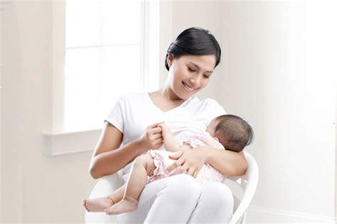 Habbatusaudah Untuk Meningkatkan Asi Air Ibu makanan penambah asi pada ibu menyusui