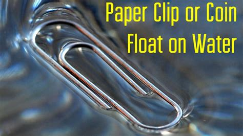 How To Make A Paper Clip Float - make a paper clip or coin float on water