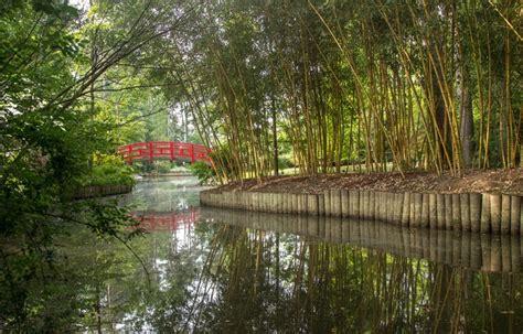 P Duke Gardens by Durham P Duke Gardens Duke Garden