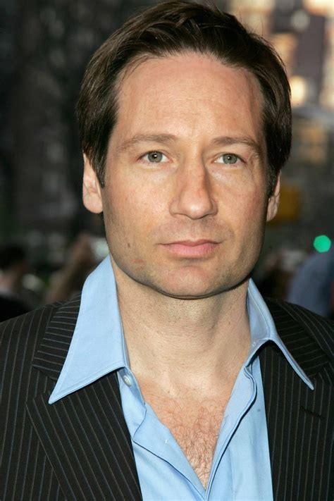 david duchovny  tv series posters  cast