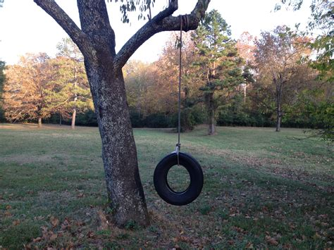 a tire swing hanging from a branch 1659 tire swing explain xkcd