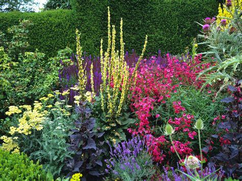 garden border planting ideas how to design and plant a herbaceous border saga