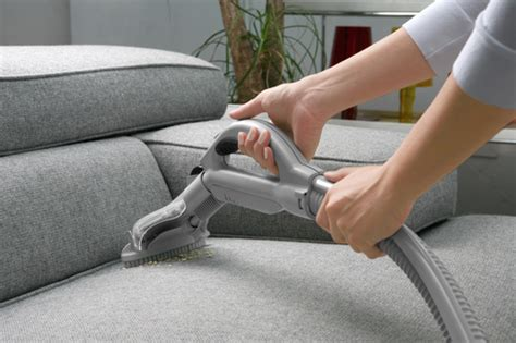 professional sofa cleaner professional sofa cleaner upholstery cleaning archives