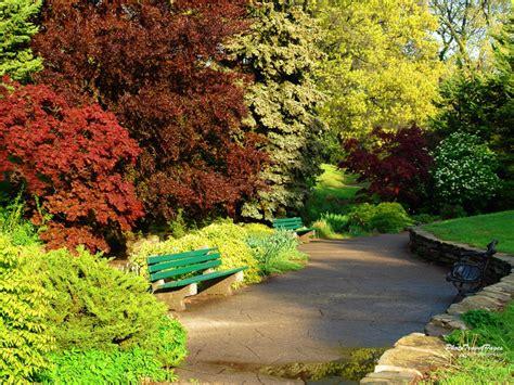 imagenes 3d bosques fondos de primavera fondos de pantalla de primavera