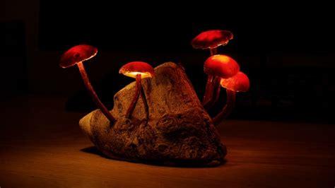 Your Organic Bedroom diy mushroom lights with forest wood id lights