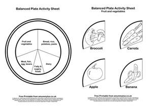diet plate template learning what makes a healthy balanced plate a