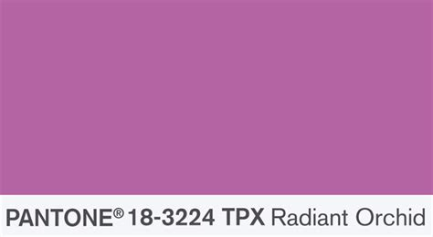 color of the year 2014 radiant orchid kenisa home