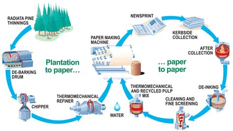 Process How To Make Paper - task 1 the manufacturing process for paper
