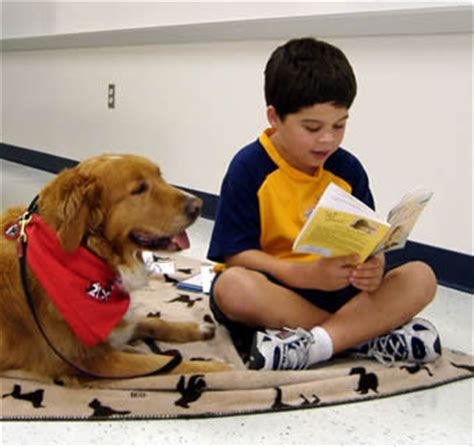 reading to dogs these libraries are going to the dogs book patrol a for book culture
