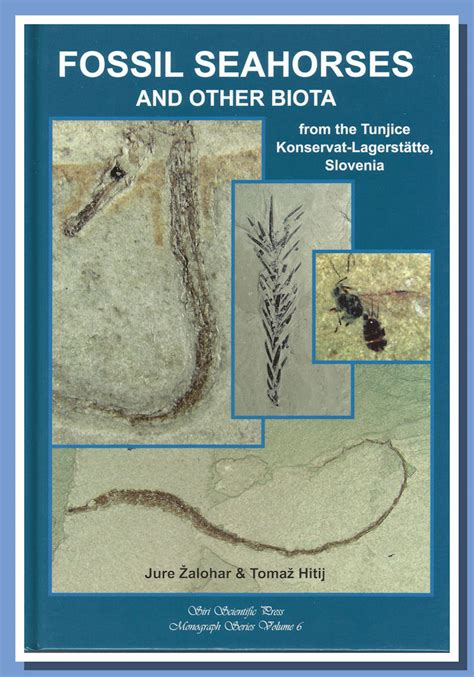 libro biota recensione fossil seahorses and other biota from the tunjice konservat lagerst 228 tte