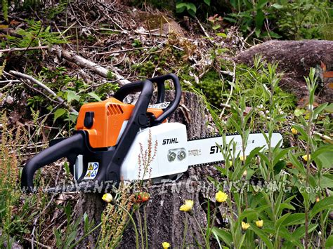 Stihl Ms170 stihl ms 170 review adventuresinchainsawing