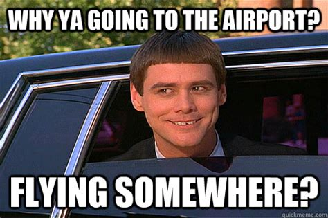 dumb and dumber funny quotes memes
