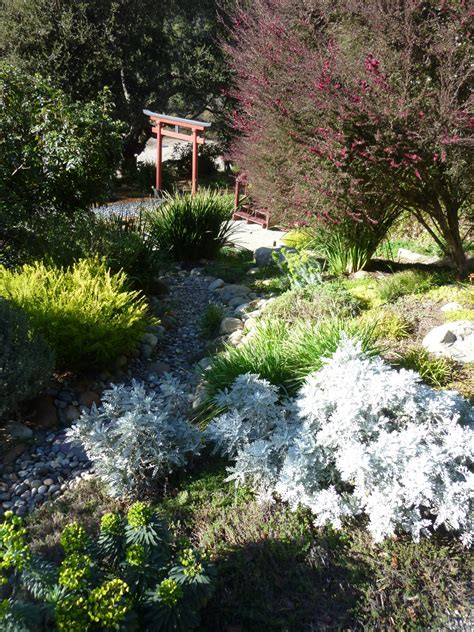 river bed dry river bed gardening tips for the santa cruz mountains
