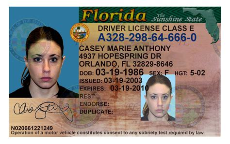 florida drivers license template caylee anthony justice denied 6 7 16 2011