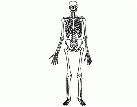 game of bones bone mr bones purposegames