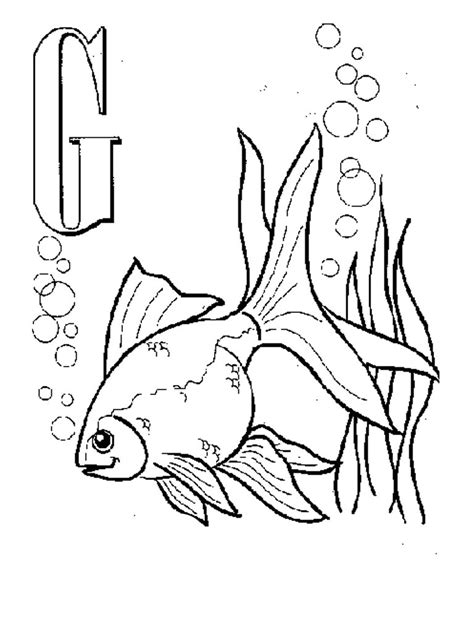 printable coloring pages goldfish free printable goldfish coloring pages for kids