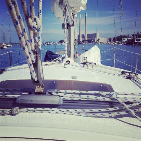 morro bay boat tours red anchor charters morro bay ca top tips before you