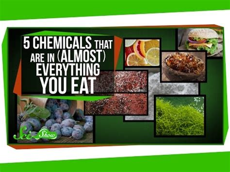 Pdf Eat Everything Discovered by 5 Chemicals Found In Nearly Everything We Eat