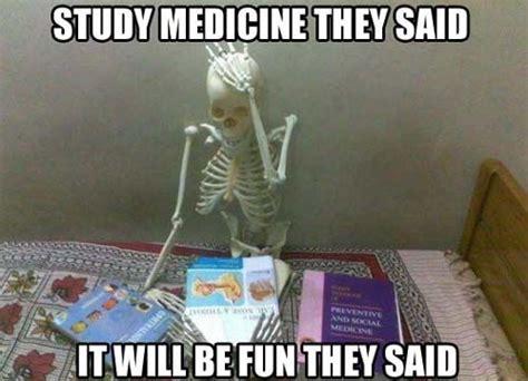 funny skeleton meme google search hbs pinterest