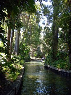 Winter Garden Florida Weather by 1000 Ideas About Winter Park Florida On