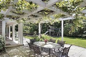 Vine Covered Pergola by Pergola With Vines Pergola Vines