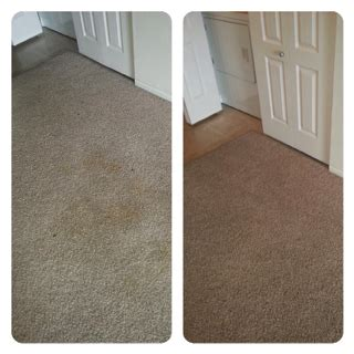 Upholstery Cleaning Colorado Springs by Results Citrusolution Carpet Cleaning Of Colorado Springs