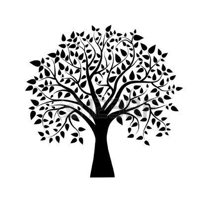 Desenhos De 225 Rvores Para Tatuagem Pesquisa Google Gostei Pinterest Baum Illustration E Royalty Free Family Tree Clip Vector Images Illustrations Istock