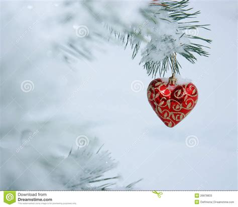 christmas heart card stock photo stock photos image