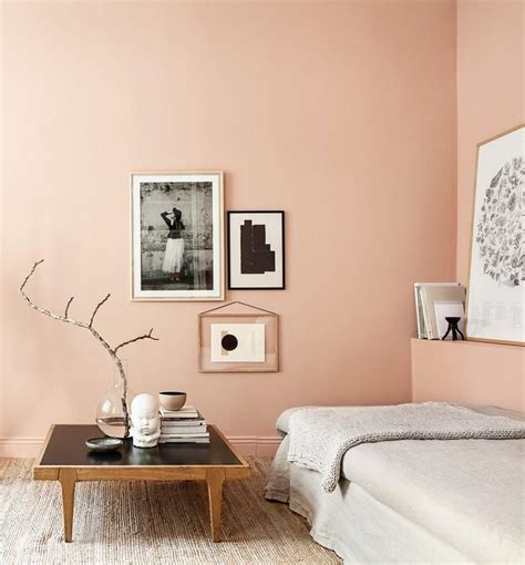Salmon Colored Bathroom by 25 Best Ideas About Salmon Bedroom On Coral