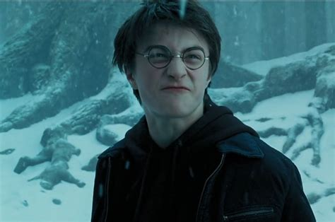 harry potter best 19 of the best harry potter related insults
