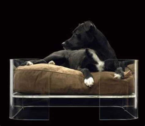 expensive dog beds most expensive things you don t need or want dirjournal