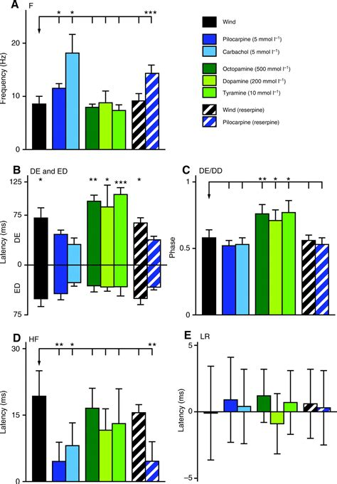 qucs pattern generator a muscarinic cholinergic mechanism underlies activation of