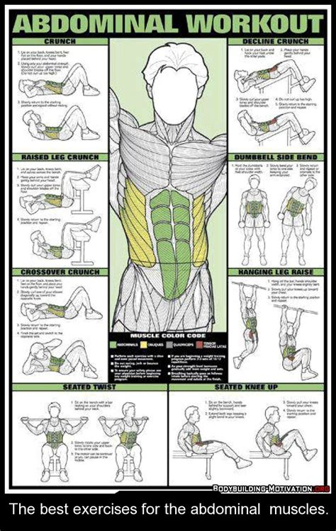 5 for building abdominal muscles exercises and muscles