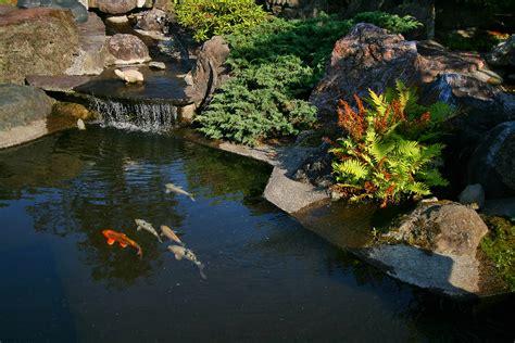 bassin jardin japonais jardin japonais bassin eau oleomac