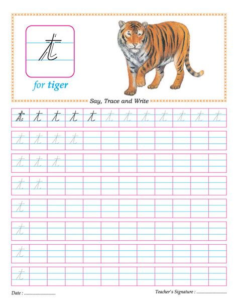 cursive small letter t practice worksheet download free