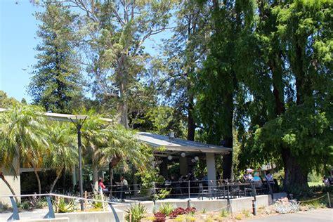 high tea melbourne botanical gardens the terrace cafe and tea rooms melbourne royal botanic