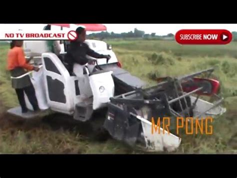 Mesin Panen Padi rice harvesting in indonesia 2016 with kubota dc35 panen