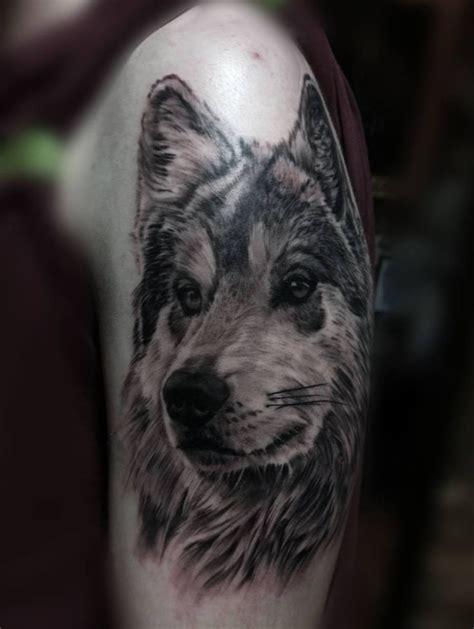 studio animal tattoo e piercing milano amazing wolf tattoo realistic upper arm design