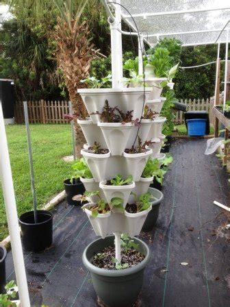 vertical garden containers for sale mr stacky 5 tiered vertical gardening planter indoor