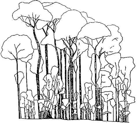 Mahogany Tree Coloring Page | free coloring pages of mahogany tree