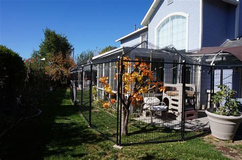 I Designed and Built My Dream Catio ? and You Can, Too
