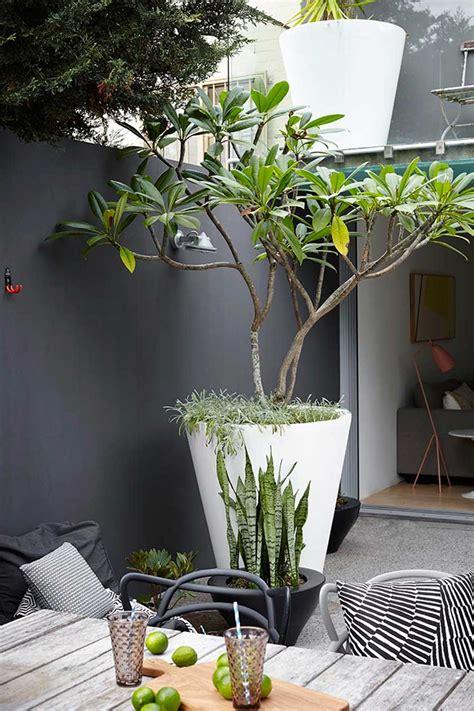 decoration mur exterieur maison cuisine mur decoration noir outdoor exterieur amenager