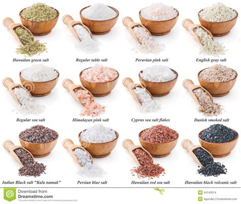 different types of collection of different types of salt isolated on stock