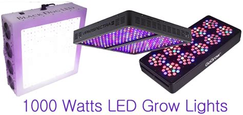 1000 watt grow light coverage best 1000 watts led grow lights for sale in 2018