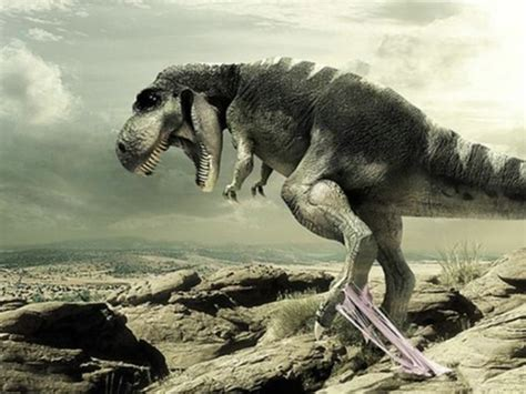 Dino Wallpaper High Definition Photo And Wallpapers Dinosaur Wallpapers