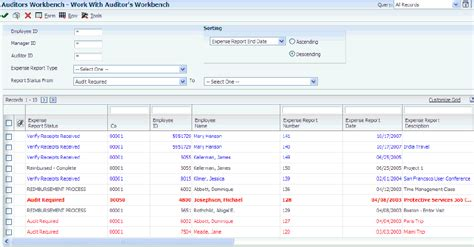 expense report templates oracle auditing expense reports