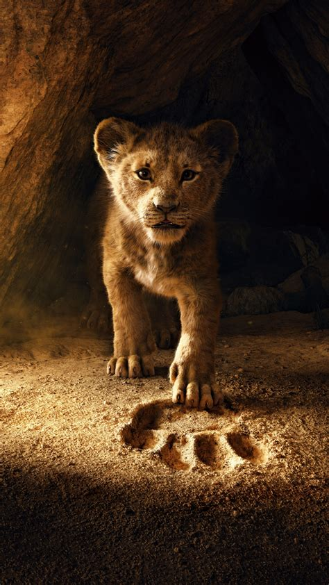 lion king  wallpaper simba lion cub  movies